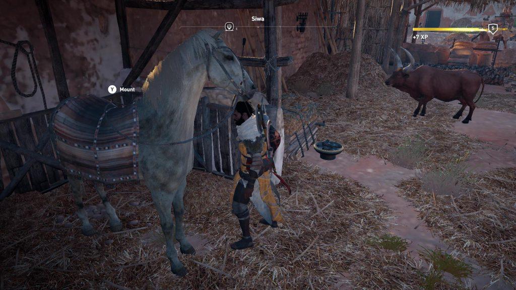 Hugger lige en hest